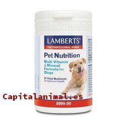 vitaminas para perros baratos