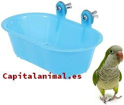 Nuestras 8 preferidas bañeras semicircular para pajaros