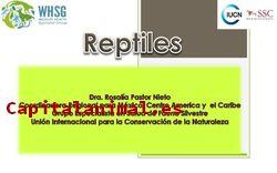 Termometros higrometro digital para reptiles Lo que no sabes de ellos